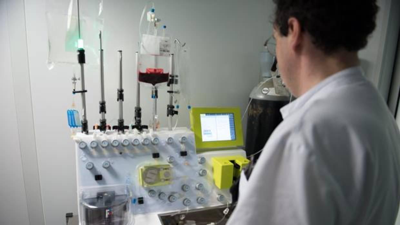 El Clínic ensaya con éxito una inmunoterapia pionera contra la leucemia