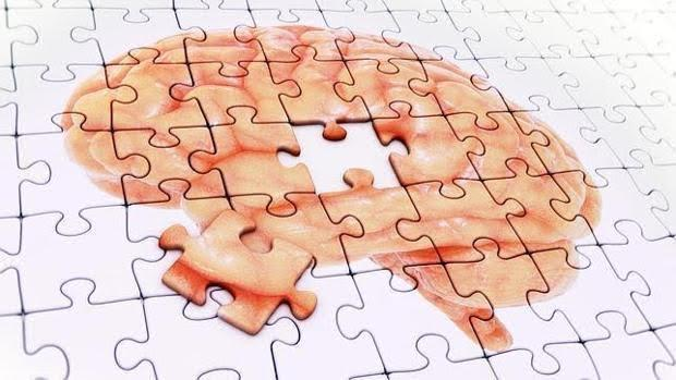 Los portadores de la variante 'ApoE4' tienen mayor riesgo de alzhéimer