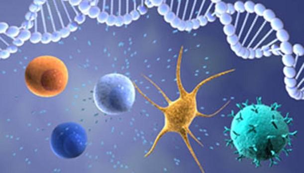Inmunoterapia en cáncer