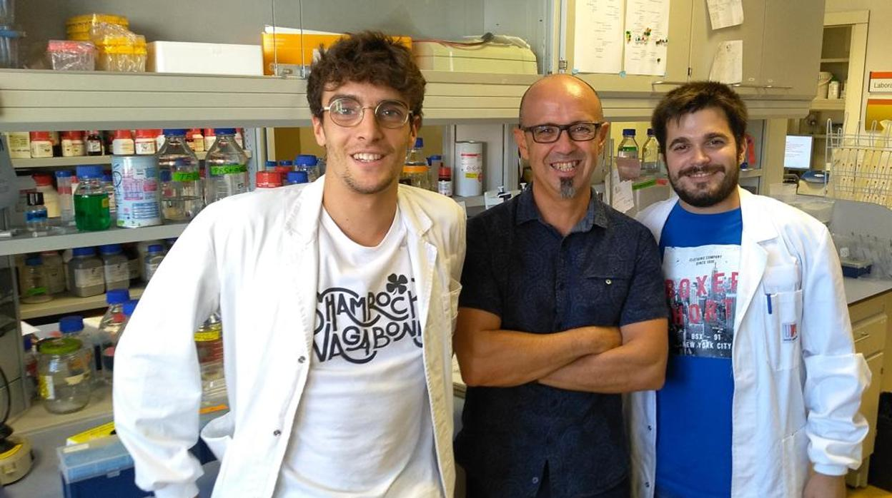 Investigadores españoles descubren una molécula que revierte la neurodegeneración del párkinson