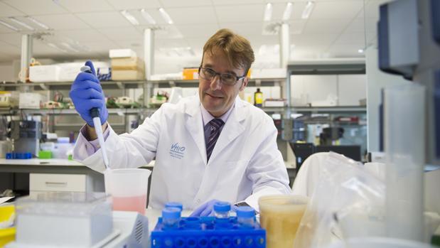 El doctor Joaquín Arribas, profesor ICREA y responsable del Programa de Investigación Preclínica del Instituto de Investigación Oncológica del Hospital Vall d'Hebron de Barcelona (VHIO)