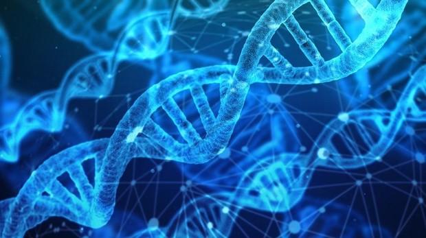 Proteina Klotho