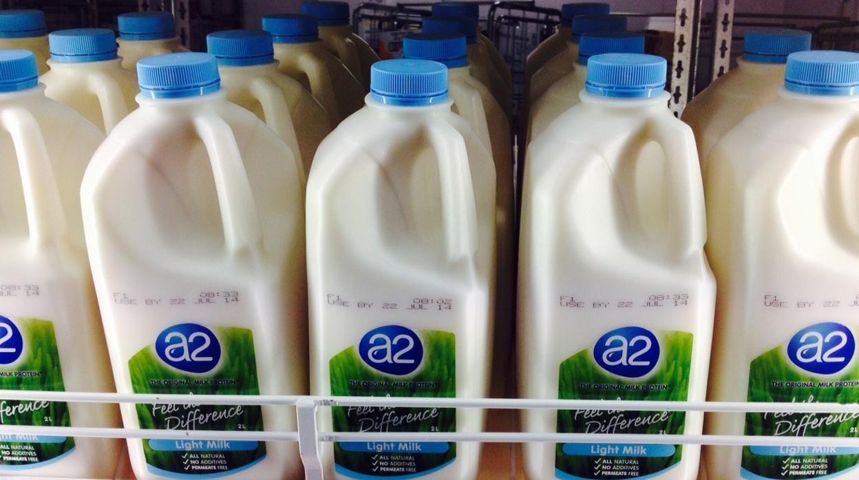 Asocian el consumo habitual de lácteos con menos posibilidades de padecer diabetes e hipertensión