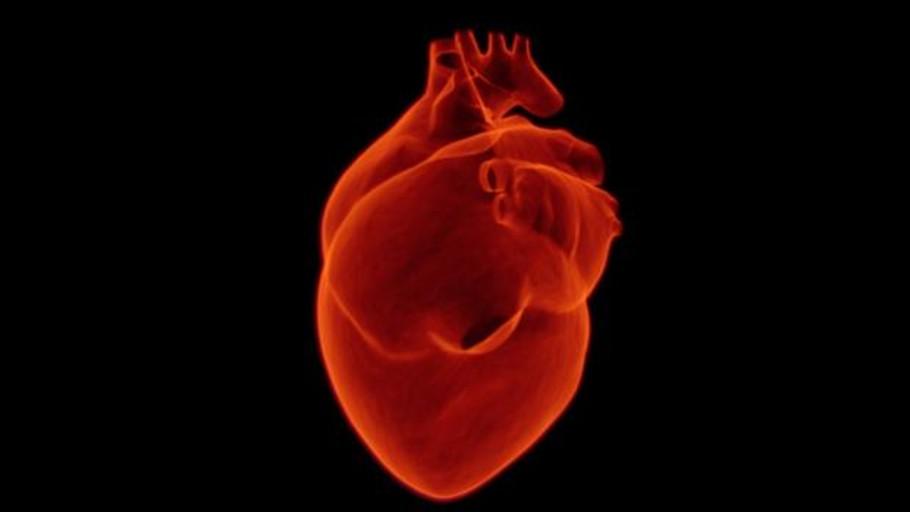 En la próxima década, 24 millones de personas en el mundo morirán por alguna enfermedad cardiovascular