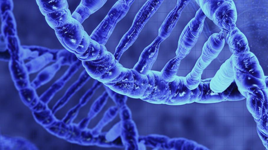 Descubren un mecanismo que acelera el alzhéimer