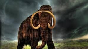 Más cerca de clonar mamuts a partir de elefantes