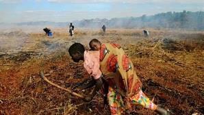 Malawi: más de 500.000 niños necesitarán ayuda alimentaria los próximos seis meses
