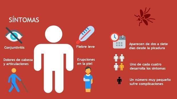 Virus zika tratamiento