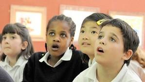 Despertar la curiosidad de los niños es el mejor estímulo