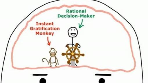 El mono de la gratificación instantánea «lucha» contra el que toma las decisiones racionales en un procrastinador