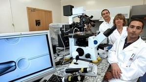 Investigadores del Laboratorio del Departamento de Biología Celular, de Fisiología y de Inmunología de la Universidad Autónoma de Barcelona que en 2009 clonaron por primera vez en España varios ratones