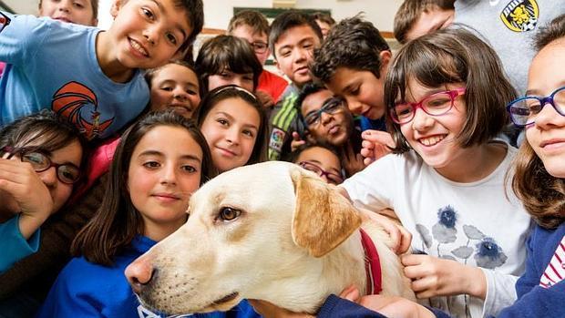 Kiara es la estrella del colegio La Salle de Valladolid