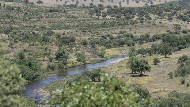 El río Estena, en la Demarcación Hidrográfica del Guadiana, una de las 82 Reservas Naturales Fluviales declaradas en España