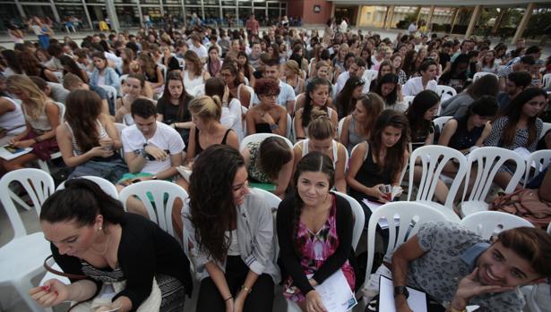 Recepcion de alumnos extranjeros y erasmus en Sevilla