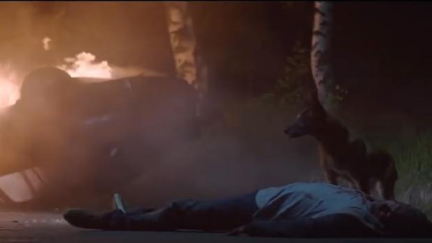 Fotograma del video de la campaña «No le abandones. Él nunca lo haría»