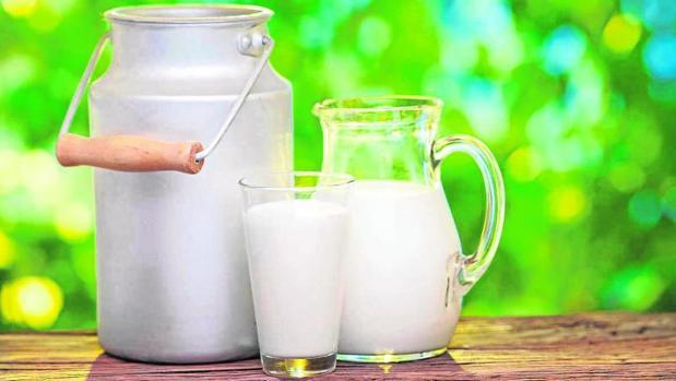 Resultado de imagen de leche