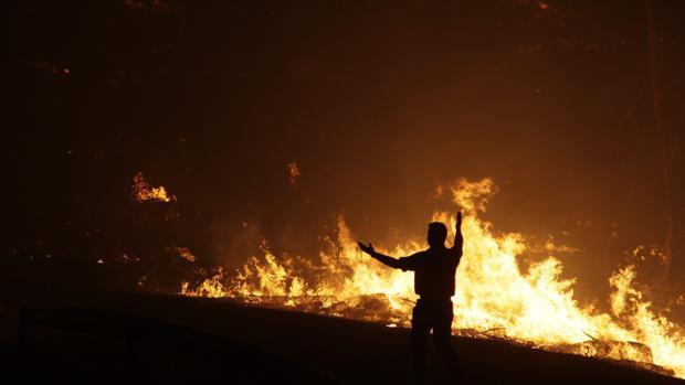 Un bombero combate un incendio forestal en Portugal