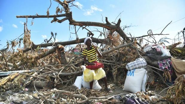 Una víctima del huracán Matthew en Haití sentada en un árbol dañado tras recibir un paquete de comida del Programa de Alimentos de la ONU