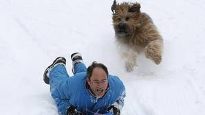 Un hombre se desliza por una colina nevada en compañía de su perro en Central Park, Nueva York