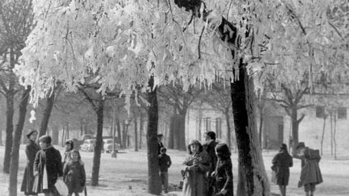 Un parque de Madrid helado en 1956
