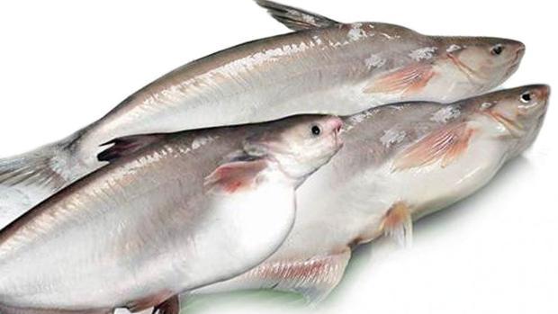 Primer revés a la venta de pescado «low cost» procedente de Asia