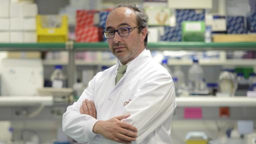 Manuel Hidalgo investiga a caballo entre la Universidad de Harvard y el Hospital de Fuenlabrada en Madrid
