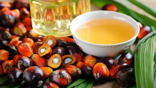 Estos son los alimentos que tienen aceite de palma y no lo sabías