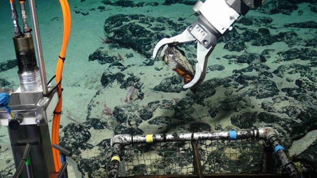 Ocho países se disputan el tesoro minero hallado en aguas de Canarias