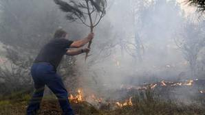 Un hombre intenta apagar pequeñas llamas del incendio desatado esta tarde en el pinar del municipio de Nieva (Segovia) que ha obligado a movilizar medios antiincendios terrestres y aéreos de la Junta de Castilla y León y del Ministerio de Agricultura y Pesca, Alimentación y Medio Ambiente, y a llamar a la Unidad Militar de Emergencias. El incendio, declarado por la Junta de nivel 1, se ha originado hacia las 14.30 horas