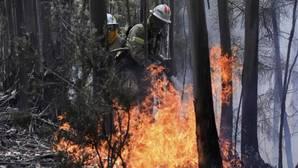 En datos: 2017 ya es el peor año en incendios del último lustro