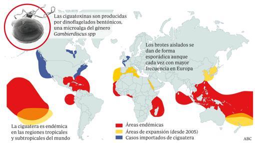 Distribución de la ciaguatoxina en el mundo