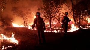 Diario de un técnico forestal: Así se combatió el incendio de Doñana