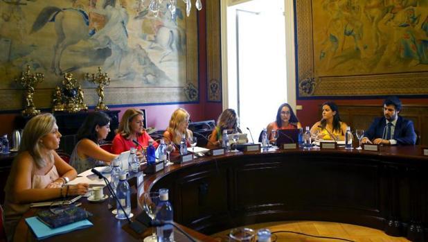 Imagen del 24 de julio de la subcomisión creada para articular el Pacto de Estado contra la violencia de género