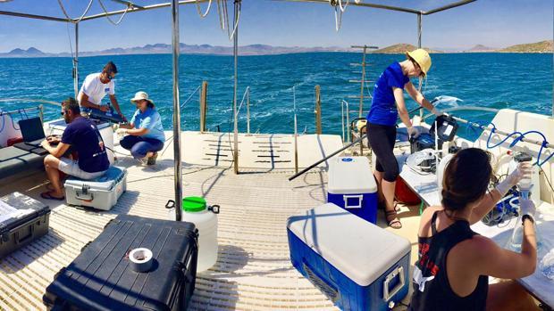 Investigadores trabajan sobre el Mar Menor comprobando los efectos de las medidas adoptadas para su recuperación