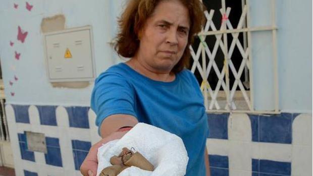 Matan a un perro al darle de comer salchichas con anzuelos dentro