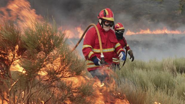 Bomberos trabajan en labores de extinción de un incendio en Portugal