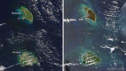 Hemeroteca: El huracán Irma deja marrones las verdes islas del Caribe   Autor del artículo: Finanzas.com