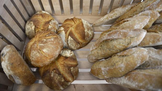 ¿Cómo comprar pan de calidad? Lo que hay que saber sobre un producto que no engorda y previene enfermedades