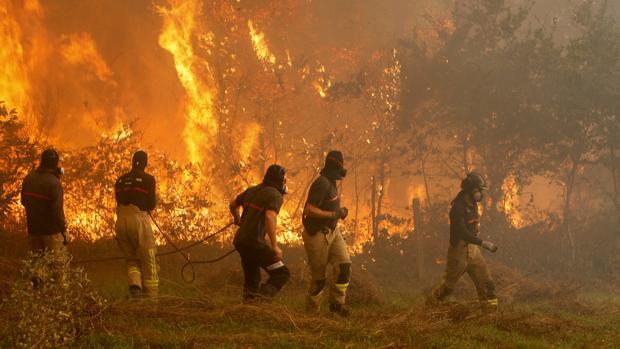 Operarios intentan sofocar uno de los incendios que se registraron en Galicia el pasado mes de octubre