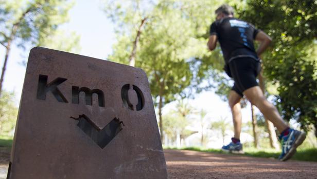 Alerta a los runners!  científicos advierten del abuso de antimonio ... 10e006b45228a