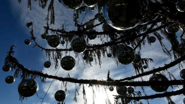 Estado en el que se encuentra el abeto de Navidad de Roma, al que este año han apodado «Spelacchio»