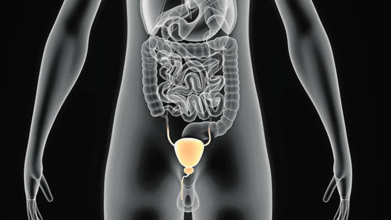 rmn próstata multiparamétrica qué etapa