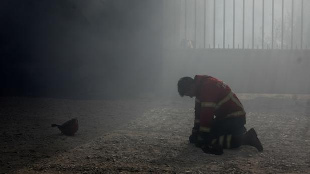 Un bombero portugués en Vila Nova de Poiares, Lousa