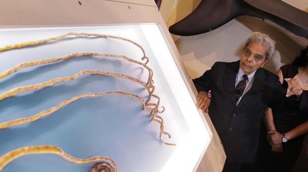Shridhar Chillal observa sus uñas, ya en el expositor