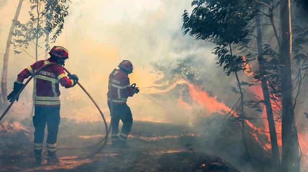 Varios bomberos luchan contra las llamas en un incendio forestal declarado en Bele, cerca de Monchique