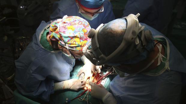 Sí, el cáncer también se puede transmitir con un trasplante de órganos