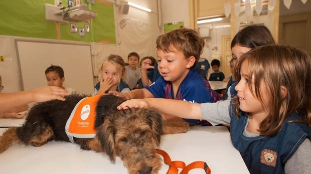Cuatro perros de terapia de la Fundación Affinity estaban a la hora de entrada de los niños para jugar con ellos
