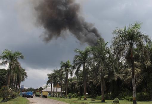 Una columna de humo asciende de una plantación de aceite de palma junto al parque natural de Tanjung Puting, al sur de la región indonesia de Kalimantan en la isla de Borneo