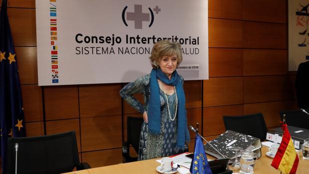 La ministra de Sanidad, Maria Luisa Carcedo, en el Consejo Interterritorial del Sistema Nacional de Salud
