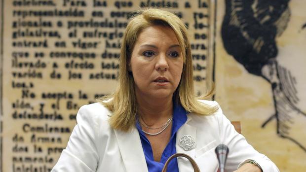 La senadora del Partido Popular, Susana Camarero
